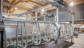 Estabulación en paralelo DairyParlor P7550