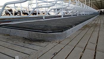 Sistema de cama Animattress de Espuma y cubierta superior